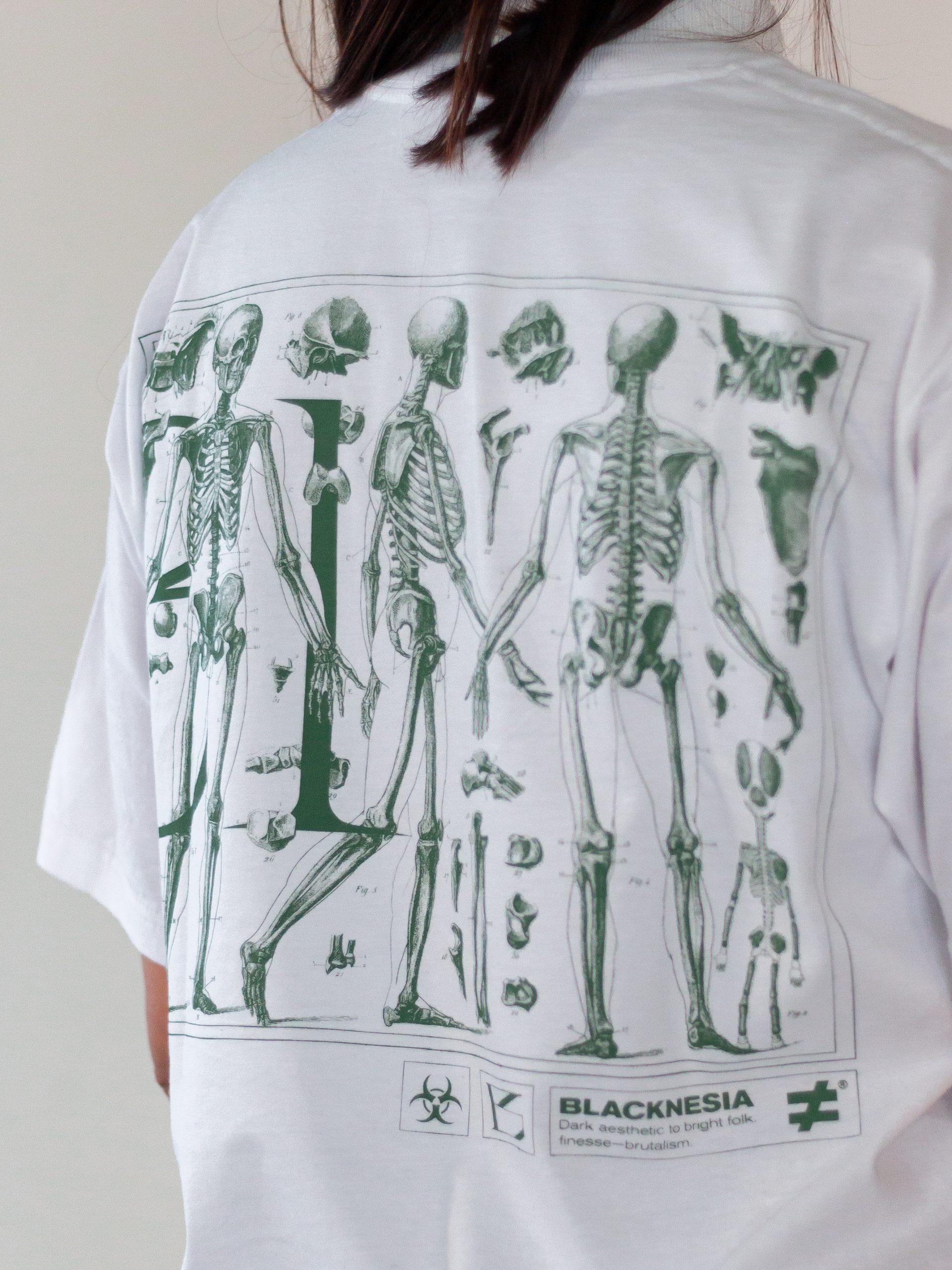 Anatomy 39